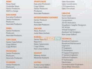 Upcomming channel hiring.(jobs) gnnhd