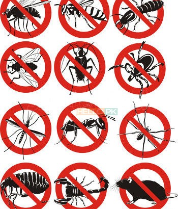 First ISO Certified Pest Management Company.Termite,Cockroaches,Mosquitoes,Flies,Rats Control