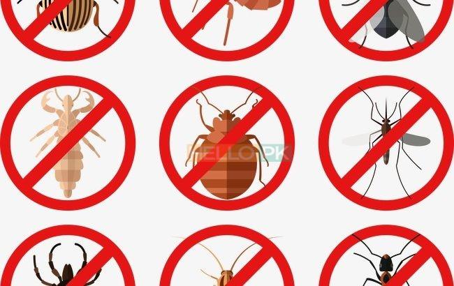 All kind of Fumigation Guaranteed Services…RBC Pest Control