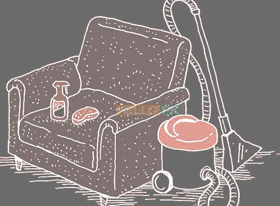 Carpet Sofa Cleaning professional services