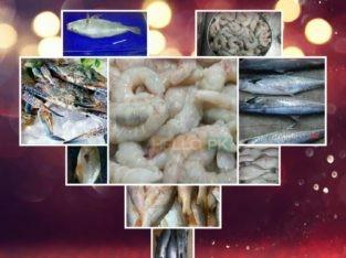 Frozen seafood at your door step