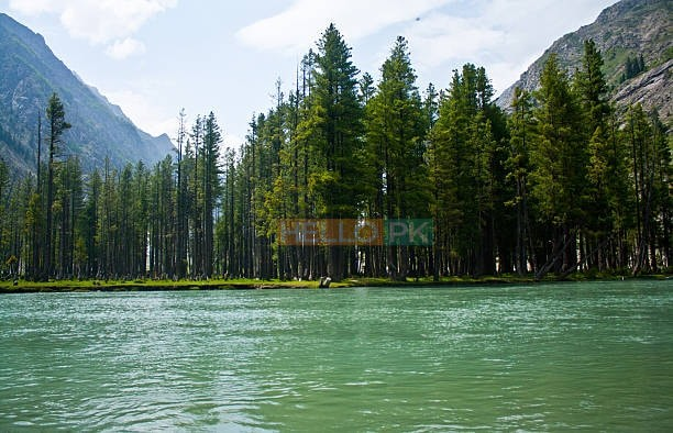 31 kanal lake front view ideal for hotel tourist resort