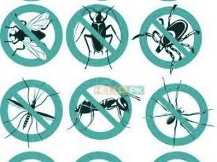 Khatmal.demak.Cockroaches.rats ka 100% yaqini khatma & water Tank Cleaning Leakage Sepage
