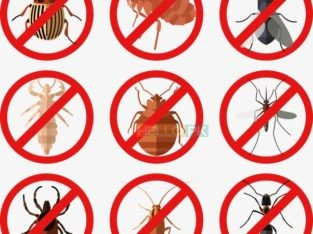 All kind of Fumigation Guaranteed Services…RBC Pest Control