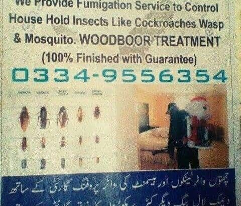 Home Maintenance Specialist in Fumigation With Guarantee. Furniture Cleaning.Water Tank Cleaning.