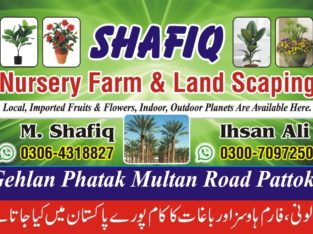 Nursery farm & landscaping.Local,imported fruits & flowers,indoor,outdoor plants are available