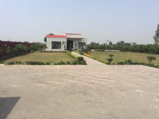 Land Available for Farm Houses Main burki road.3 4 6 8 15 Kanal