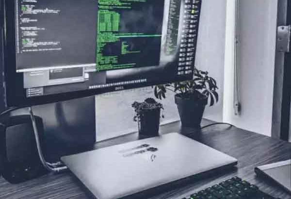We need WordPress & Graphics Designer Expert | Home Based Job