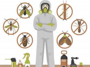Guaranteed & Safe Termite Control/Fumigation Services