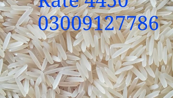 Best Quality 1121 Sella Rice Colour Sort Available
