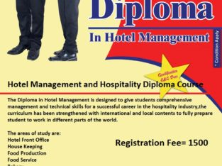 Diploma in Teaching Skills for Educators Course