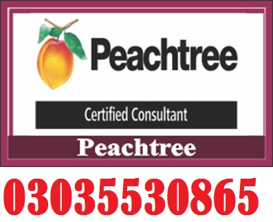 Peachtree Pro Accounting 2009