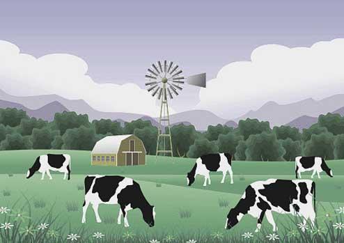 1000 To 4000 Yards Plots.Cattle Farm & Family Farmhouse.Fori Qabza Fori Tameer