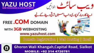 Free Domain.We Design your Responsive Website in Cheaper Rate With Free Domain