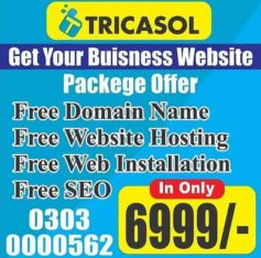 Business Website With Free Domain Free Hosting Free SEO
