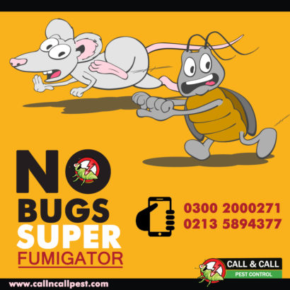 End year Offer.Best Fumigation & pest control Services