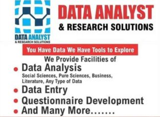 Data analyst & Research Solution Services in Pakistan