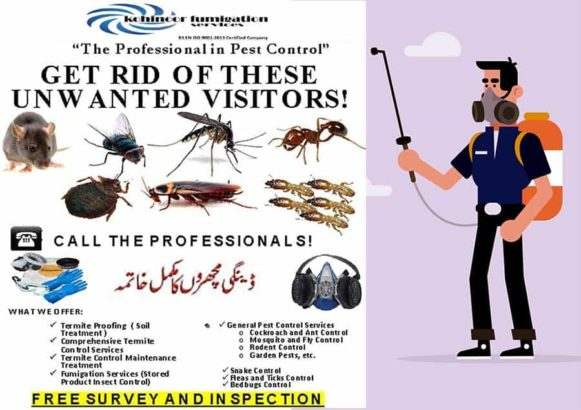 Best Fumigation Services For Companies,Offices & Houses