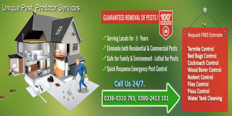 Unique Fumigation, Pest Control Services in Karachi, Termite, Bed Bugs