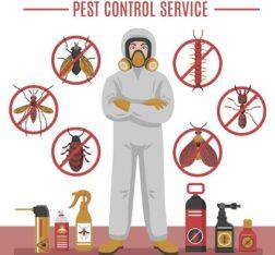 Termite Control in Karachi