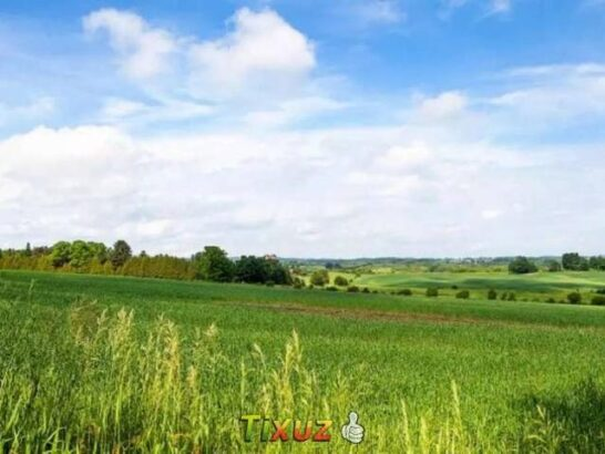 Land for sale.for farm house & agriculture