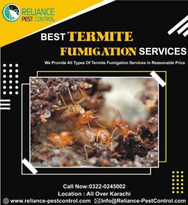 pest control services, fumigation, termite, cockroaches, bed bugs