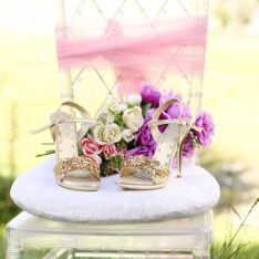 Classy Wedding Shoes Collection